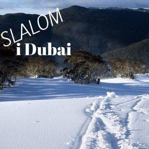 Åk slalom i Dubai 3