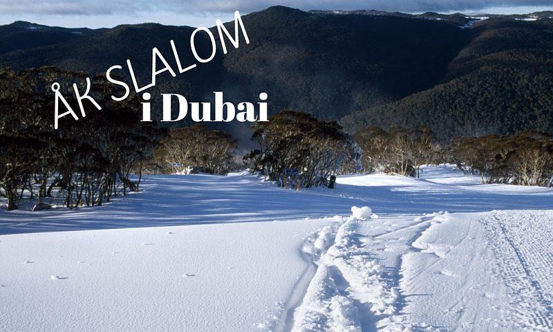 Åk slalom i Dubai 1
