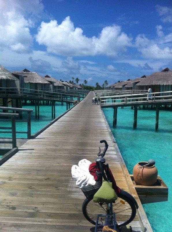 Original , Maldiverna