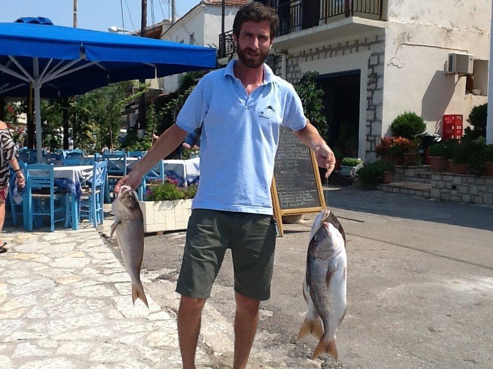 fish_meganissi