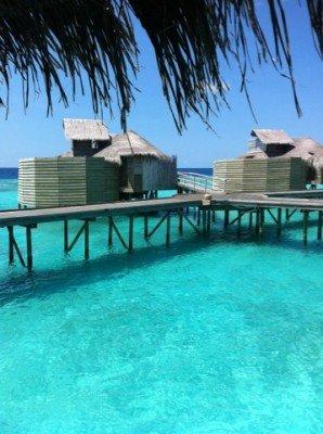Six Senses Laamu, Maldiverna 1