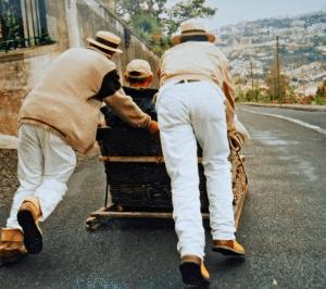 Åk korgsläde på Madeira 2