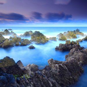 Fem måsten när man besöker Madeira 1