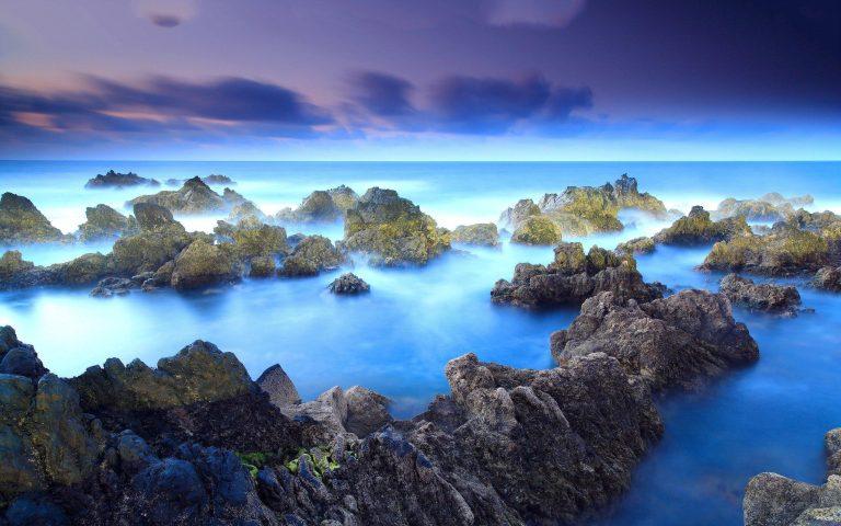 Madeira, 5 saker man måste göra