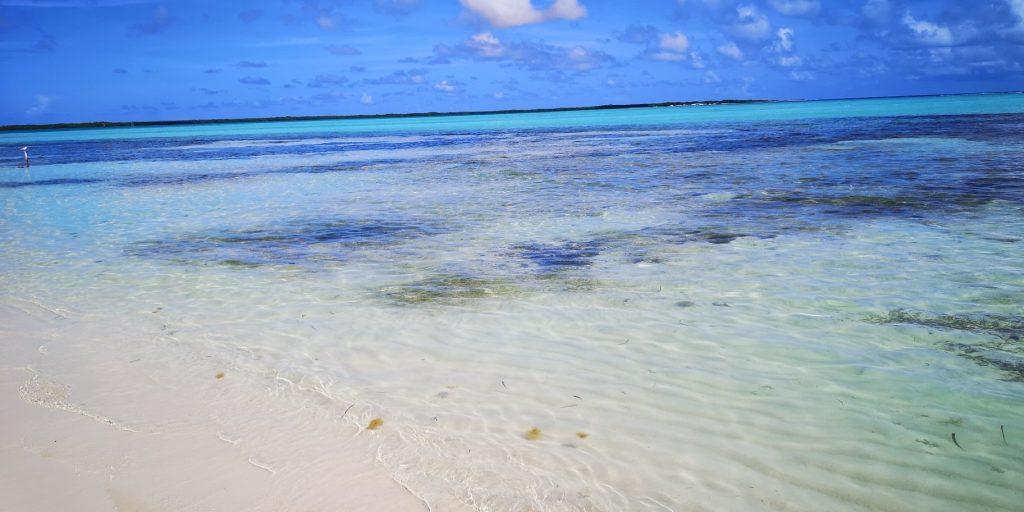 Bonaire, återbesöket 2