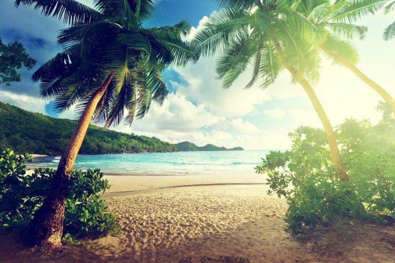 Upplev Seychellerna, Maldiverna och Sydindien