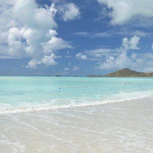 Daiquiri både en drink och en strand 5