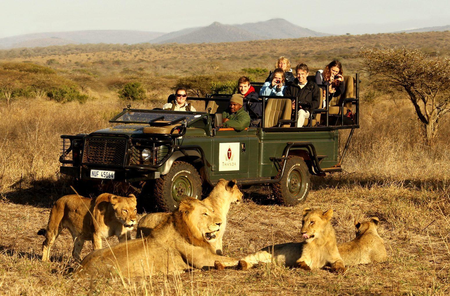 Annorlunda semester i Sydafrika 1